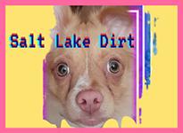 Salt Lake Dirt Logo